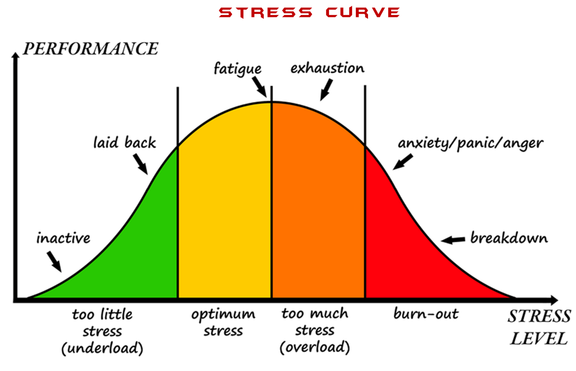 Types Of Stressors (Eustress Vs. Distress)
